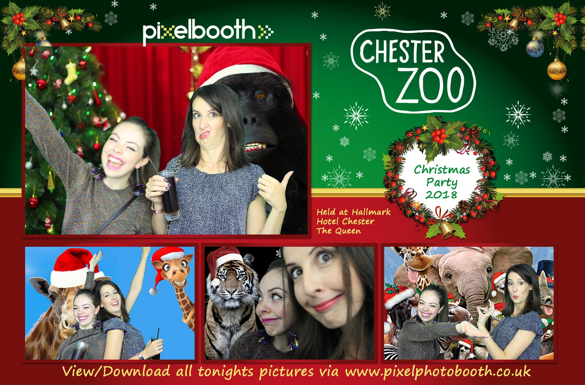 29th Nov 2018: Chester Zoo's Christmas Party at The Queen Hotel